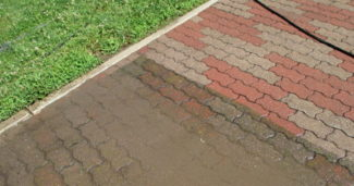 Pulizia cortile, che fare?