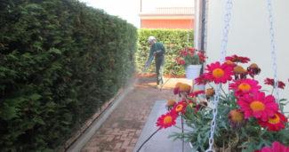 Pulizia cortile di casa, che fare?